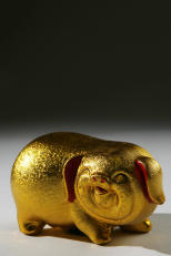 goldenpig.jpg